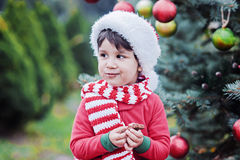 Little boy holding christmas gingerbread closeup. Child waiting for a Christmas in the wood. Christmas in juli royalty free stock photos