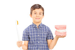 Little boy holding denture and a toothbrush Royalty Free Stock Images