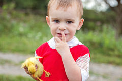 Little boy holding a duckling  hands and looking into the camera Royalty Free Stock Images