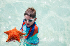 Little boy holding a giant starfish Stock Photography