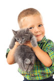 Little boy holding a gray kitten Stock Images