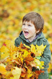 Little boy holding leaves in the park. Little boy screaming while holding leaves in the park Royalty Free Stock Photo