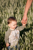 Little boy holding moms hand Stock Photography