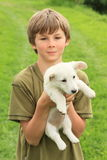 Little boy holding a puppy stock image