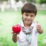 A little boy holds red apple on the background of summer park Royalty Free Stock Images