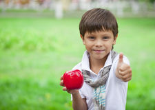 A little boy holds red apple on the background of summer park Royalty Free Stock Photography
