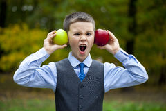 A little boy holds red and green apple on the background of autu Stock Image