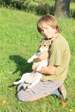 Little boy hugging a dog Stock Photography