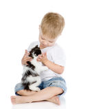 Little boy hugging kitten. isolated on white background Royalty Free Stock Photo