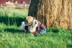 Little boy hugs his dog stock photos