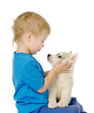 Little boy and huskies puppy. isolated on white background Stock Photos