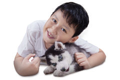 Little boy and husky puppy in studio Royalty Free Stock Images
