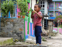Little boy in Jagat village Stock Images
