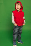 Little boy in jeans and a hoodie Royalty Free Stock Photo