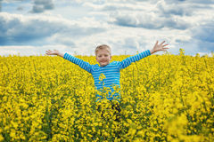 Little boy jumping for joy on a meadow in a sunny day Royalty Free Stock Photo