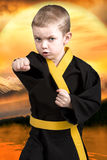 Little boy karate shows the techniques of the Japanese martial art karate. Training young athletes,Champions. Martial art karate.Little learner fulfills strokes royalty free stock photos