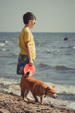 Little boy kid child with dog having fun on beach Stock Images