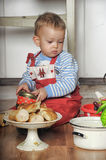 Little boy in the kitchen Royalty Free Stock Image