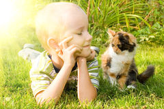 Little boy with a kitten Royalty Free Stock Photography