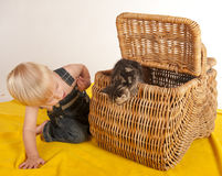 Little boy and kitten in basket Stock Image