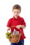 Little boy with kitten in basket Stock Images