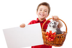 Little boy with kitty and banner Royalty Free Stock Photography
