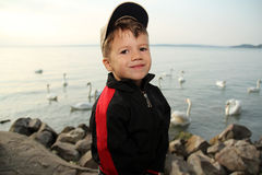 Little boy at lake with swan Stock Photography