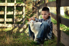 Little boy with lamb Royalty Free Stock Images