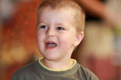 Little boy laughs Stock Photography