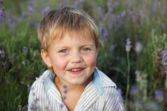 Little boy in lavender field. Outdoor summer Stock Images