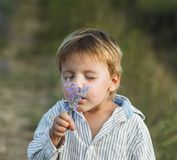 Little boy in lavender field. Outdoor summer Royalty Free Stock Photo