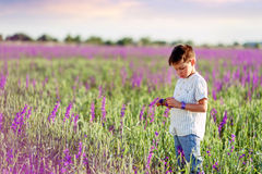 Little boy on the lavender field Stock Photography