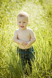 Little boy on the lawn, a child for a walk outdoors Stock Image
