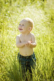 Little boy on the lawn, a child for a walk outdoors Royalty Free Stock Images
