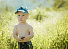 Little boy on the lawn, Royalty Free Stock Photos