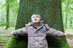 Little boy leaning on big tree Stock Images