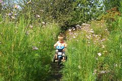 A little boy is learning to ride a bike. A little boy learns to ride a bike in the garden among flowers stock photography