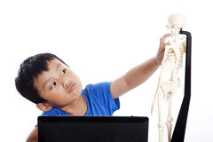 Little boy learns human anatomy Royalty Free Stock Photography