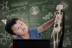Little boy learns human anatomy Stock Image