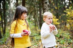 Little boy and little girl eating apples in forest Royalty Free Stock Photos
