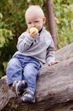 Little boy on a log. Little boy sitting on a log in the forest and eating a green apple stock image