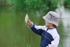 Little boy look at the caught fish Stock Photos