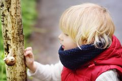 Little boy looking on big snail during hike in forest Royalty Free Stock Photo