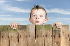 Little boy looking from bove a fence Stock Photos