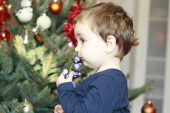 Little boy looking at he christmas tree Stock Photos