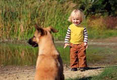 Little boy looking at a dog Stock Photography