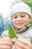 Little  boy looking at leaf Stock Photography