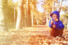Little boy looking at leaves in autumn Royalty Free Stock Images