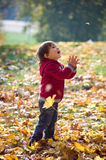 Little boy looking up on a falling leaf in wonder Royalty Free Stock Image