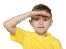 Little boy looks afar Royalty Free Stock Images